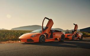 автомобили, lamborghini, murcielago, lp640, roadster, вид, спереди, суперкар, экстерьер, оранжевый, итальянские, спортивные