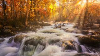 природа, реки, озера, осень, лес, река