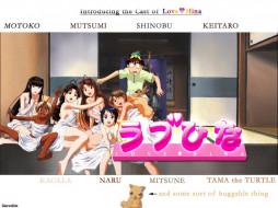 love, hina, аниме