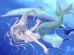 аниме, miss, surfersparadise