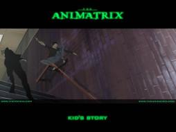аниме, animatrix