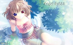 аниме, tenbatsu, angel, rabbie