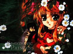 shamanic, princess, аниме
