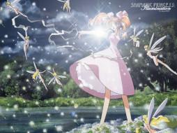 аниме, shamanic, princess