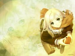 аниме, tony, taka, mangaka