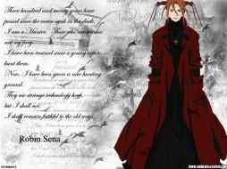 аниме, witch, hunter, robin
