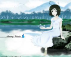 аниме, someday`s, dreamers