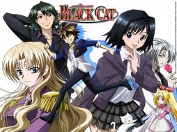 аниме, black, cat