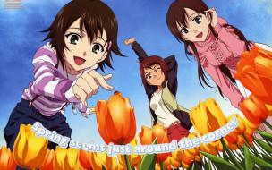 аниме, true, tears