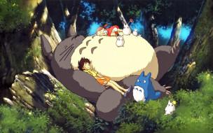 аниме, my, neighbor, totoro