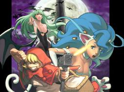 аниме, night, warriors