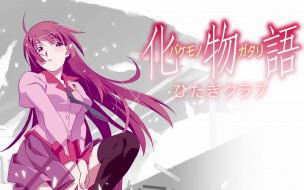обои для рабочего стола 1680x1050 аниме, bakemonogatari, senjougahara hitagi, девушка, форма, ветер, галстук