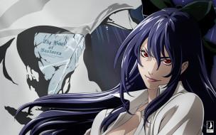 tatakau, shisho, the, book, of, bantorra, аниме