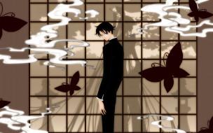 аниме, xxxholic
