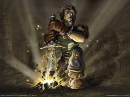 fable, the, lost, chapters, видео, игры