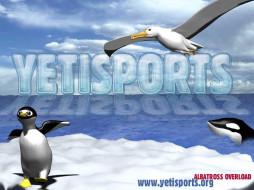 обои для рабочего стола 1024x768 видео, игры, yetisports, albatross, overload