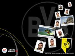 видео, игры, fifa, manager, 09