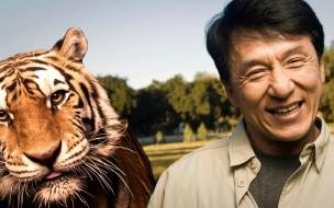 jackie, chan, мужчины, актер, улыбка, тигр