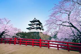 города, замки, Японии, пагода, сакура