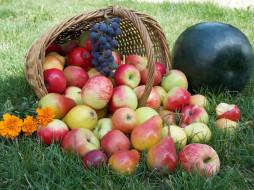 обои для рабочего стола 2048x1536 еда, фрукты, ягоды, арбузы, яблоки