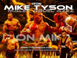 iron, mike, спорт, бокс