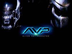 Чужой, проти, хищника, кино, фильмы, alien, vs, predator