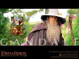 волшебник, маг, посох, шляпа, мантия, борода, гендальф