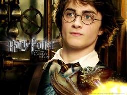 harry, potter, the, goblet, of, fire, кино, фильмы