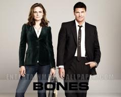 кино, фильмы, bones