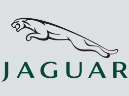 бренды, авто, мото, jaguar, Ягуар