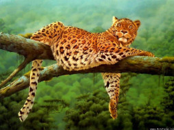 Ягуар, рисованные, животные, ягуары, леопарды