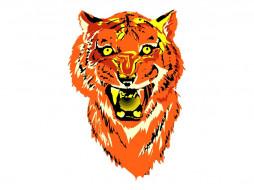 рисованные, животные, тигры