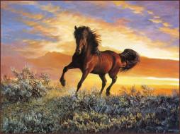 рисованные, животные, лошади