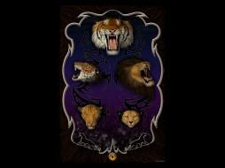 тигр, лев, ягуар, леопард, гепард