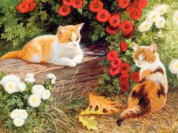02, рисованные, животные, коты