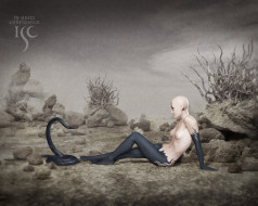 бренды, isc, змея, человек, камни, пустыня
