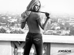 jordache, бренды