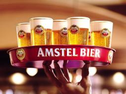бренды, amstel