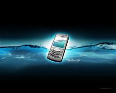 бренды, blackberry