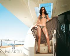 бренды, paladini