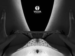 vulva, original, бренды