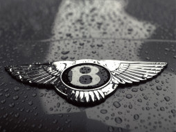 bentley, бренды, авто, мото, buick