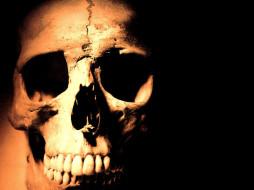 разное, кости, рентген