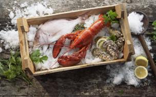 обои для рабочего стола 1920x1200 еда, рыба, морепродукты, суши, роллы, мидии, лимон, лед, краб