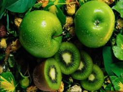 яблочки, еда, фрукты, ягоды