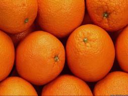 апельсины, еда, цитрусы