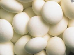 Яица, еда, Яйца