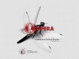 opera, fly, компьютеры