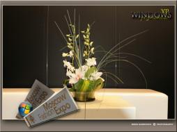 обои для рабочего стола №383836 добавил(a):egorovich разрешение:1280x960