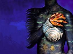 девушка, тело, рисунок, боди-арт, ракушка, рука, груди